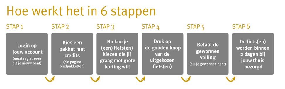 6_stappen